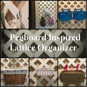 Pegboard-Inspired Lattice